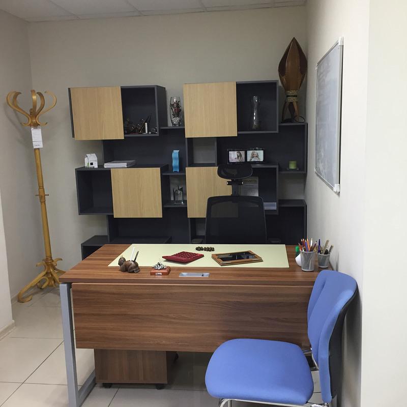 Офисная мебель-Офисная мебель «Модель 69»-фото2